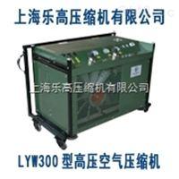 空气呼吸器填充泵【电话021-65462984】