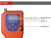 便携式可燃煤气检测仪